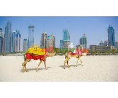 3 NIGHT PACKAGE IN DUBAI