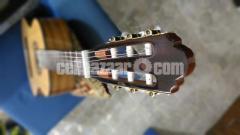 Jack & Danny Classical Guitar - Image 3/8
