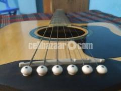 Fender A series Acoustic Guitar