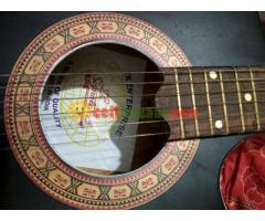 signatere guitar