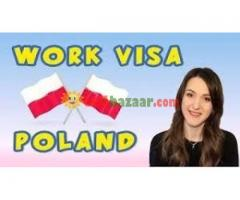 Job Visa,Visit Visa,Business Visa
