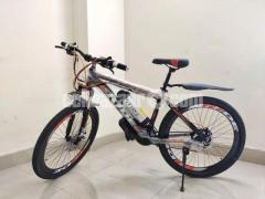 E-Cycle Model Ride 701