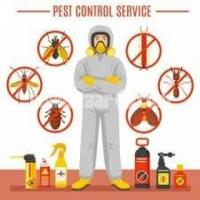 UK cleaning & Pest control service Ltd.