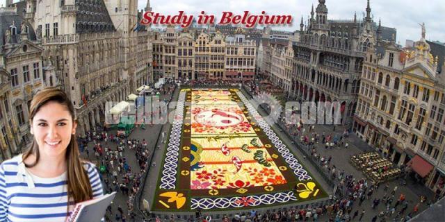 Study In Belgium - 1/1