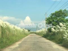 LAND SHARE KACHPUR JATRAMORA@12 SOTOK