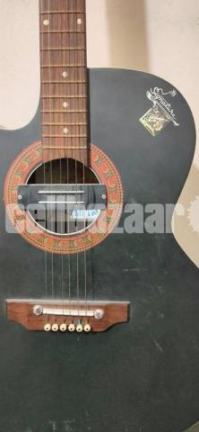 Signature Acoustic Guitar (Left Handed) - 2/4