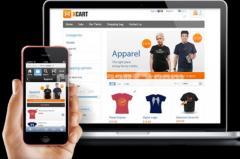 Business or Ecommerce Website Design-Mobile Friendly