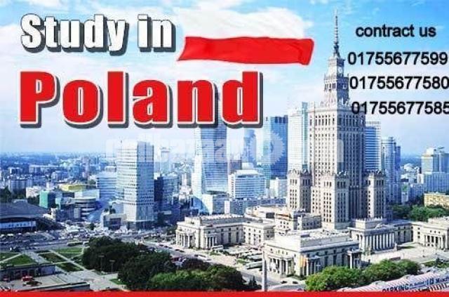 Study in POLAND - 1/1