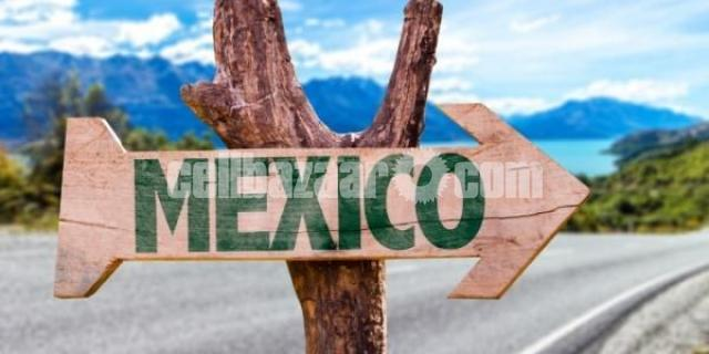 Study In Mexico - 1/1