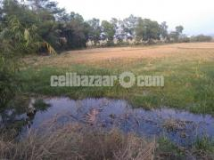 Land for sell - Image 1/2