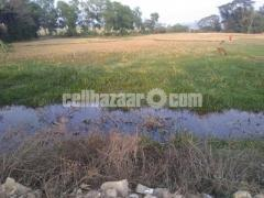 Land for sell - Image 2/2