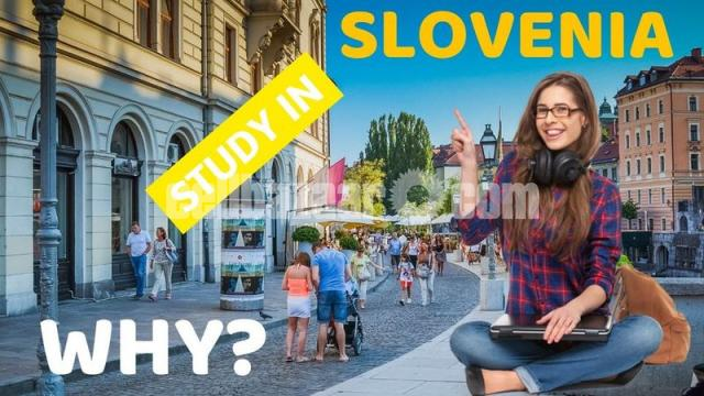 Study In Slovenia - 1/1