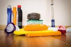 pest control & cleaning service