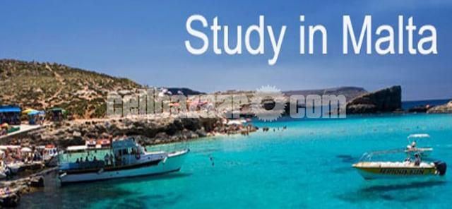 Study In Malta - 1/1