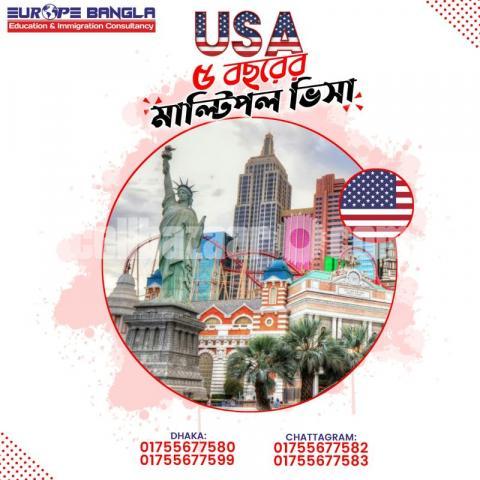 USA Multiple Visa - 1/1
