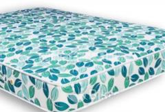 Champion Spring Mattress (81x57x8) inc