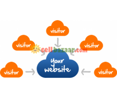 Website visitor