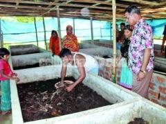 ট্রাইকো কম্পোষ্ট সার (Tricho-Compost Fertilizer)