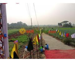 সম্পূর্ণ উচু জমিতে আমাদের ল্যান্ড প্রজেক্ট, কেরানীগঞ্জ