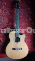 Custom Guitar with Equalizer