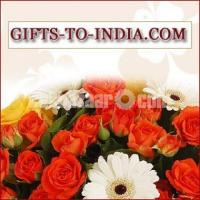 Order the Best Valentine's Day Gifts Online at Low Cost- Free Shipping in India