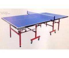 Table Tennis Table Single Folding