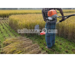 Rice Paddy Cutter