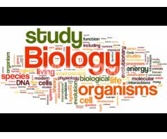 House Tutor for Biology - Image 5/5