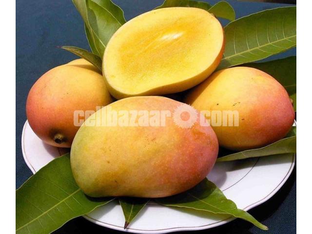 Mango of Rajshahi and Chapainawabgong - 1/5