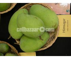 Mango of Rajshahi and Chapainawabgong
