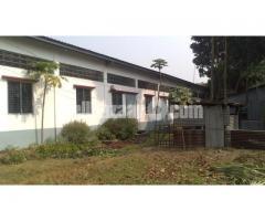 5.5 bigha land with factory setup at mawna - Image 1/5