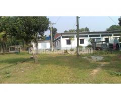 5.5 bigha land with factory setup at mawna - Image 2/5
