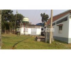 5.5 bigha land with factory setup at mawna - Image 4/5