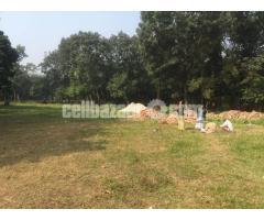25 bigha land at barotopa