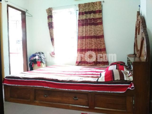Box bed(7/6'') 1no shegun wood - 5/5