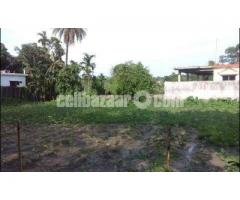 Land in Residential area in Sarail-B.Baria