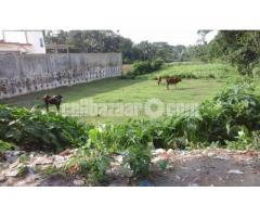 Land in Residential area in Sarail-B.Baria - Image 2/5