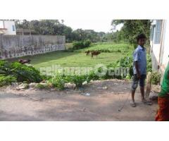 Land in Residential area in Sarail-B.Baria - Image 4/5