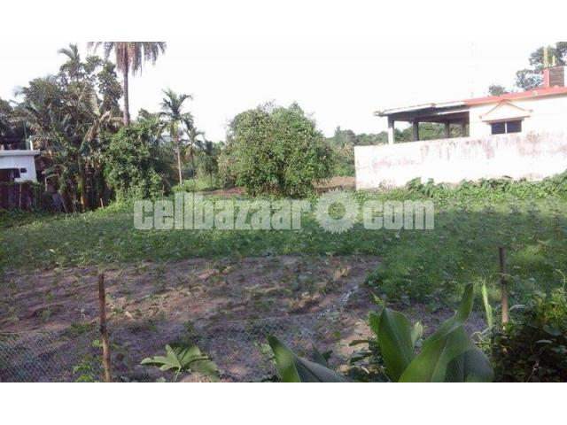 Land in Residential area in Sarail-B.Baria - 5/5