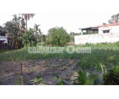 Land in Residential area in Sarail-B.Baria - Image 5/5
