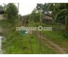 Fish Hatchery & Poultry Farm for Sale