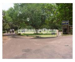 AVENUE ROAD SIDE PLOT NEAR PURBACHAL