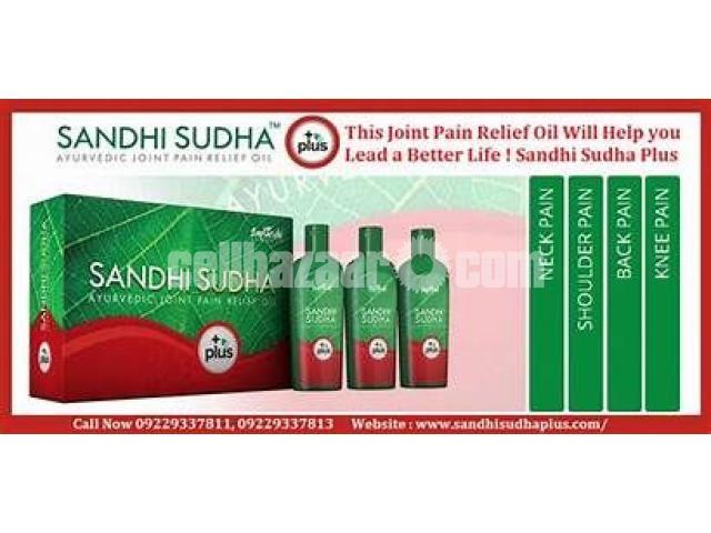 SANDHI SUDHA PLUS - 5/5