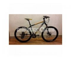 Bicycle Phoenix 1700