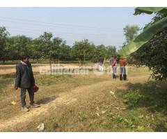 30 bigha land at rejendra pur