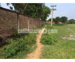 30 bigha land at kashar