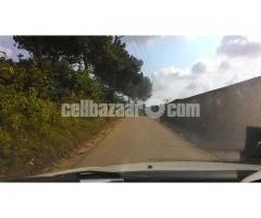 70 bigha land at sreepur