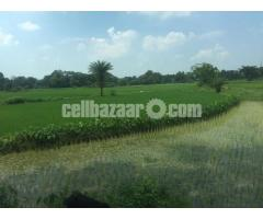 100 bigha industrial land at valuka