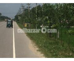 100 bigha industrial land at valuka