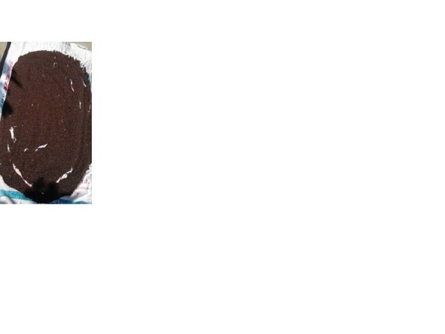 Musterd seed Desi original - 1/1